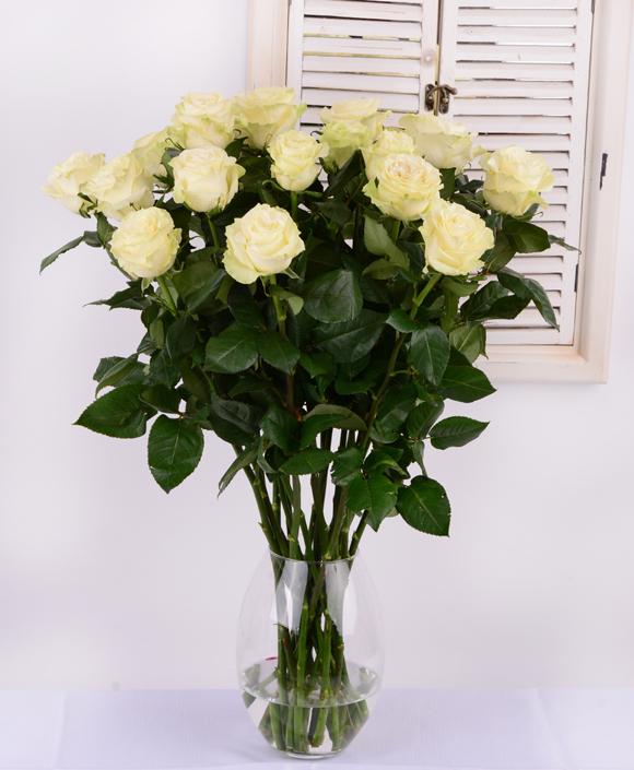 4a0339c7cd95 Biele ruže - KVETYEXPRES.SK