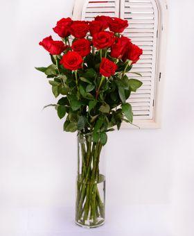 Červnené ruže